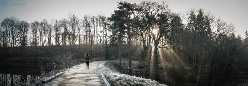 Female walker in red winter hat walks along frosty, lakeside woodland path.