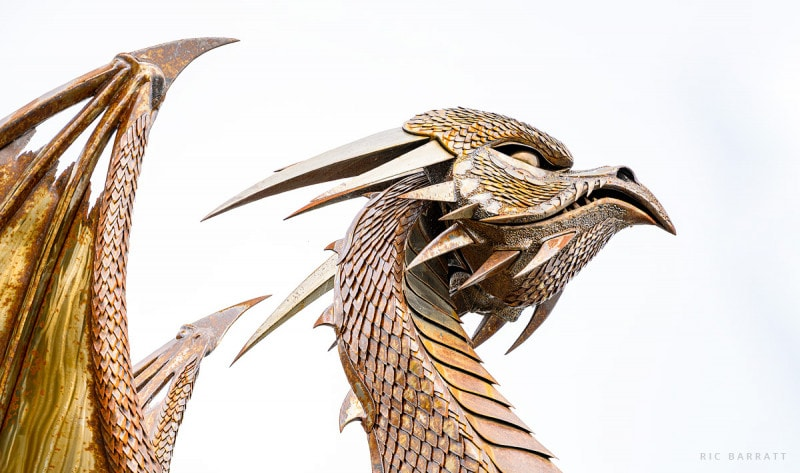 Silver and gold head of a dragon from the metal.