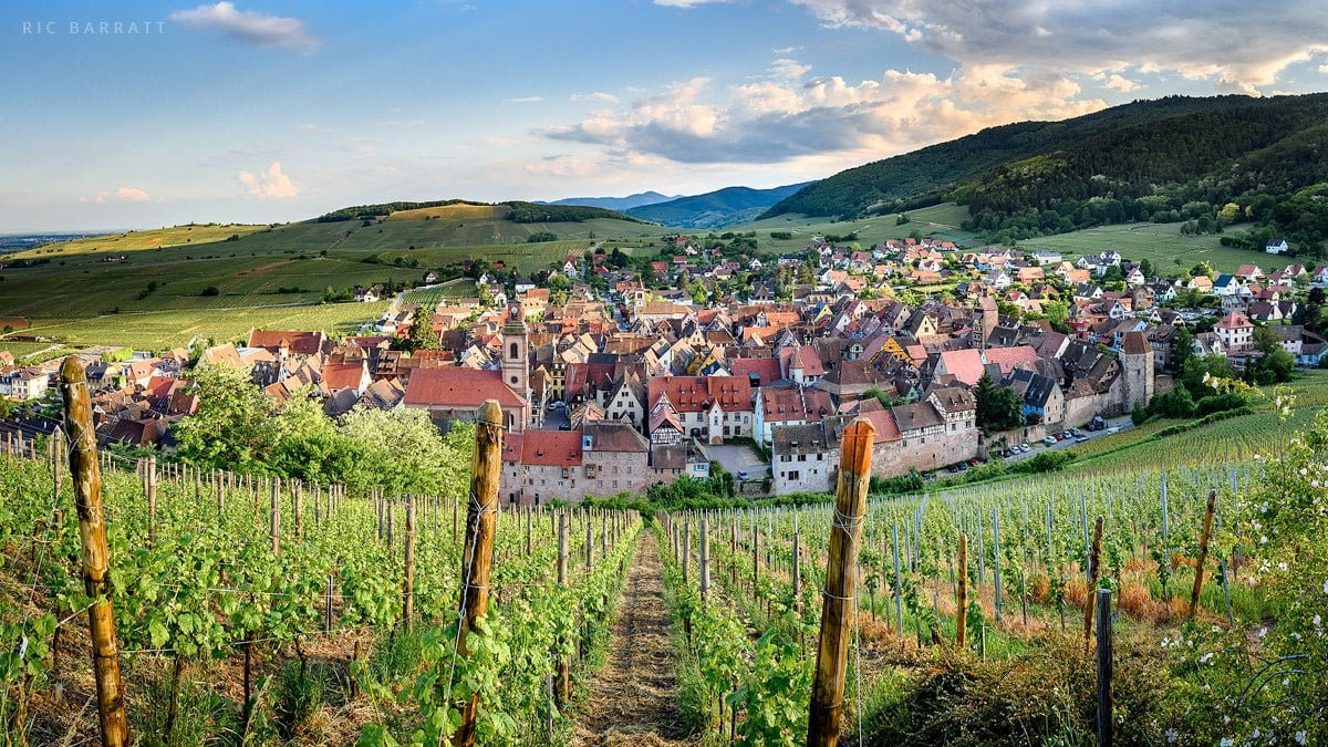 Medieval walled town surrounded by vineyards and wooded hills.