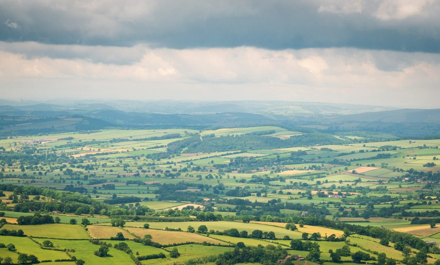 Wide shot of patchwork fields in the English countryside, showing no specific subject.